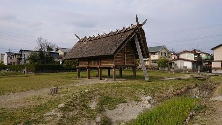 20190499shizuoka(1).JPG